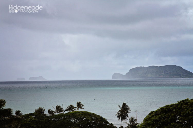 Kualoa Ranch #20