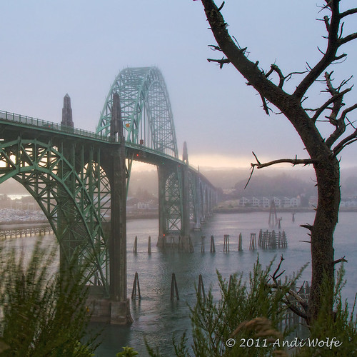 Newport Bridge over Yaquina Bay by andiwolfe (back from travels, need to catch up)