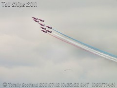 Red Arrows 5/11