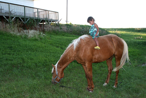 Kaidence finds another horse to ride