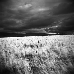 The stories we heard (Zeb Andrews) Tags: film field grass oregon fence square ir holga infrared pacificnorthwest stormyskies ilfordsfx200 abertrim bluemooncamera