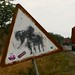 Ops, sinal de elefantes!