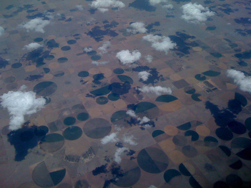 4crop circles -- many.jpg