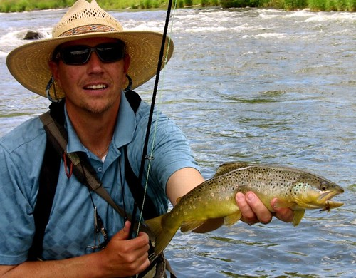 Provo Brown Trout and Drake