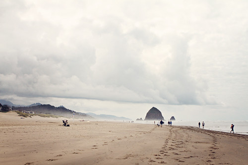 Oregon Coast 242