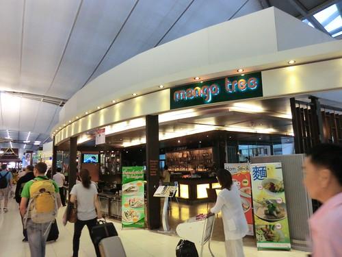 Mango tree in スワンナプーム国際空港