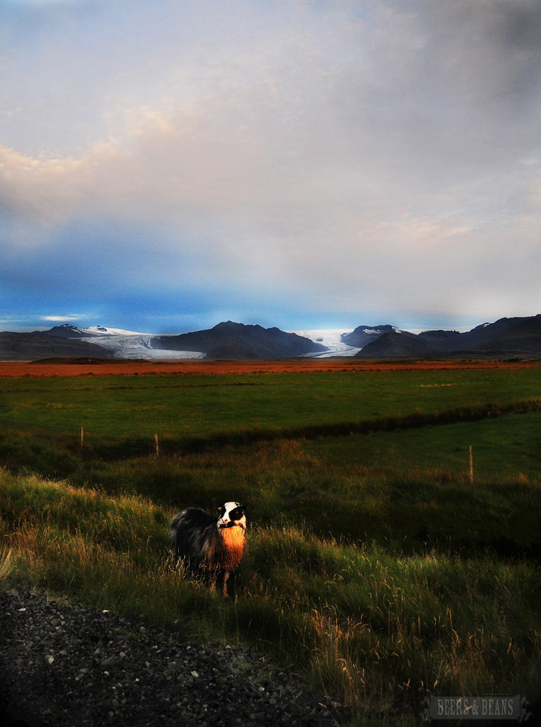 iceland landscape 4 smaller for BnB