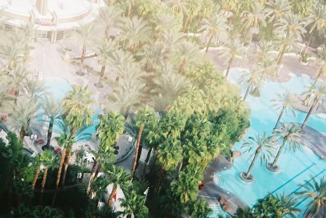 missing paradise