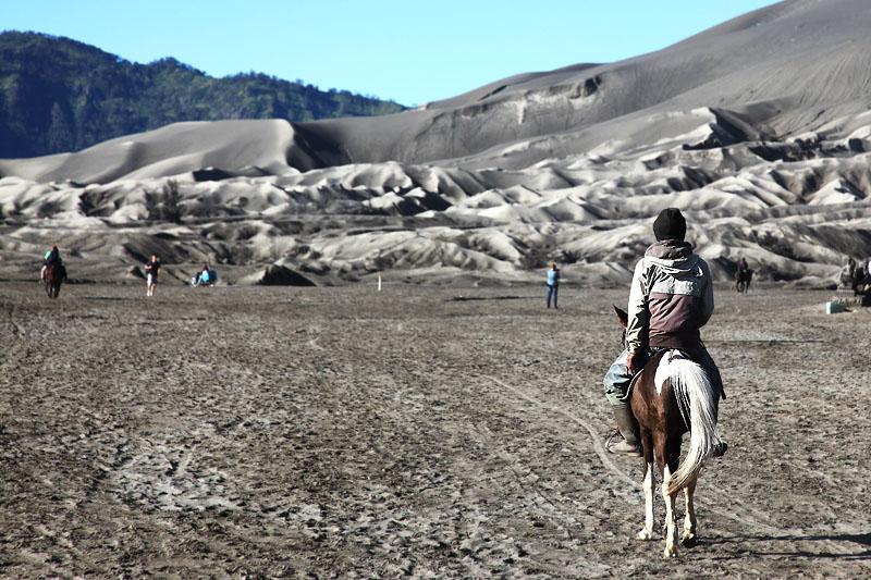 Horseman IMG_0271-w