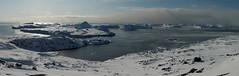 Disko bay (Ingiro) Tags: sea ice mare greenland iceberg artic artico ghiaccio disko ingiro ilulissat groenlandia diskobay