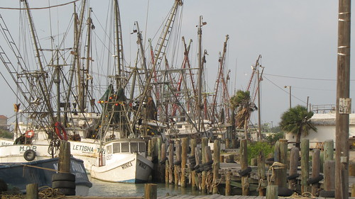 A mess of masts by ricmcarthur