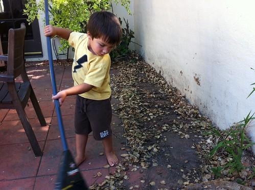 Finn sweeps