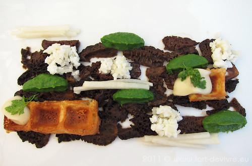 Spitz-Morcheln mit Wiesenkerbel, Eiszapfen, Mokka & Topinambur