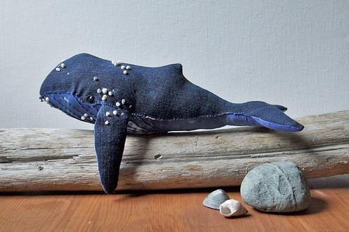 humpback whale no. 15