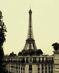 Eiffel Tower (pixiprol) Tags: white black paris france building tower de french noir tour ile eiffel francia blanc parisian immeuble parisien