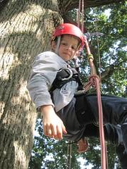 IMG_3410 (Goodleaf Tree Climbing) Tags: isleofwight oaktree treeclimbing goodleaf