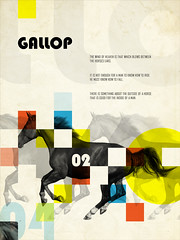 Gallop (Paul N Grech) Tags: horse nature animals photoshop poster grid typography freedom graphicdesign illustrator stallion gallop paulgrech