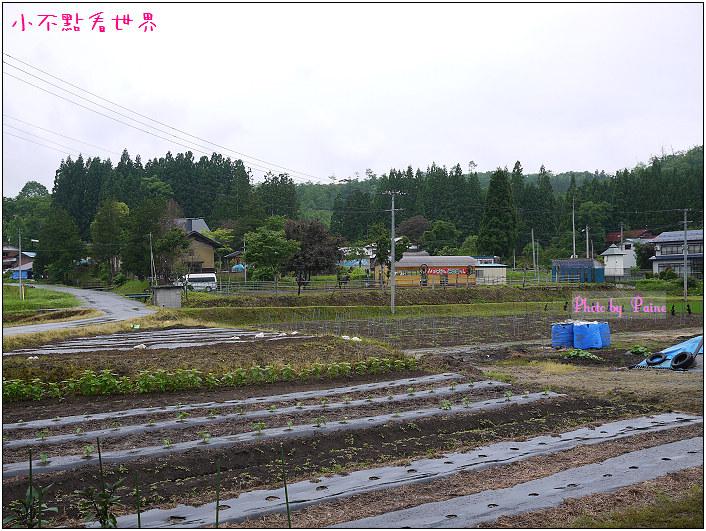 大森町生態農場DIY-17.jpg