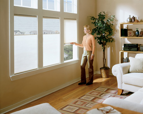 Light Filtering Cordless Cell Shades