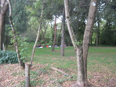 SERVICIOS ECOLOGICOS (ninoshka72) Tags: cordoba humedal