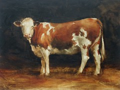 Modern Cows (Flickr set)