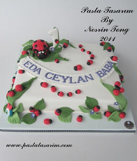 1st bırthday lady bugs cake