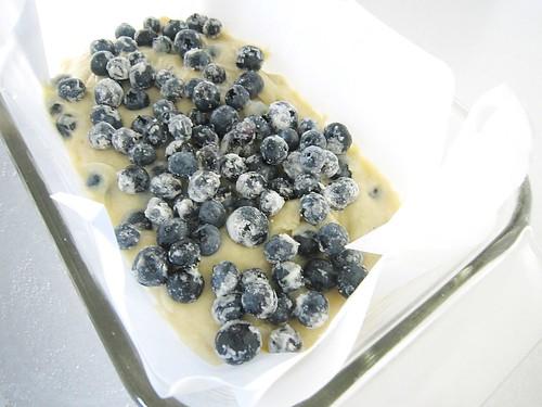 BlueberryCake8