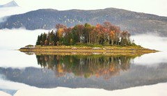 Small island (leifolsen) Tags: autumn trees sky mist mountain fall water colors beautiful norway fog landscape island norge scenery mood hill himmel fjord islet dis vann senja fjell hst tke holme troms landskap trr y stemning smallisland northernnorway s beautifulnorway senjaisland liteny