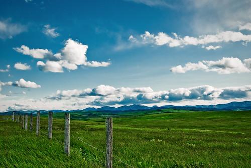 フリー写真素材, 自然・風景, 草原, 雲, カナダ,