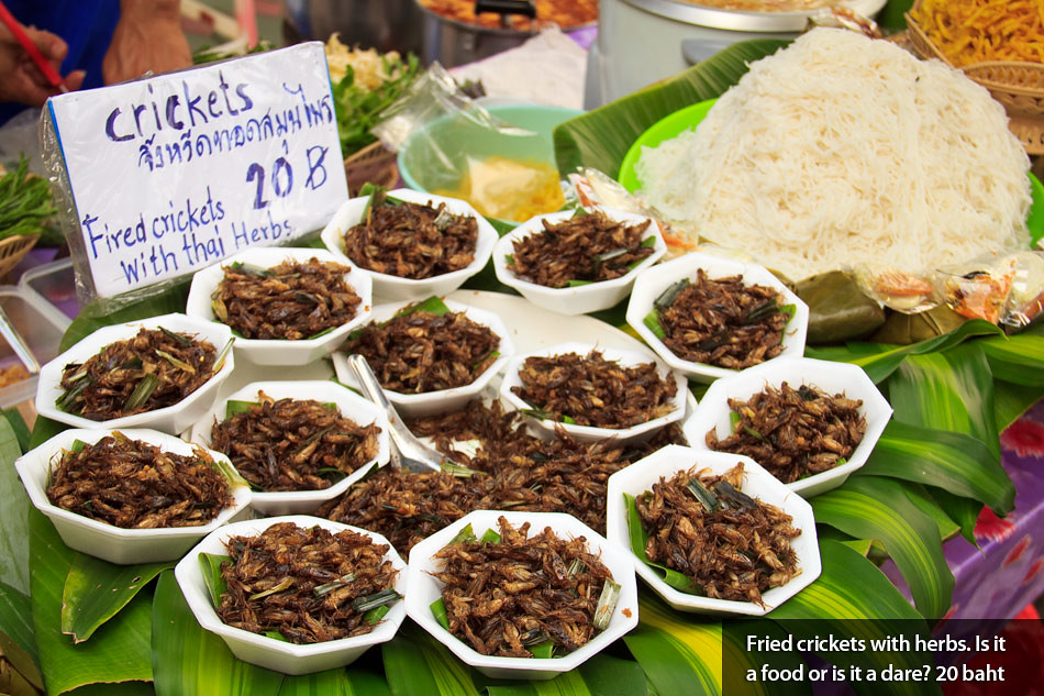 Travel Photos: Street Food in Chiang Mai, Thailand