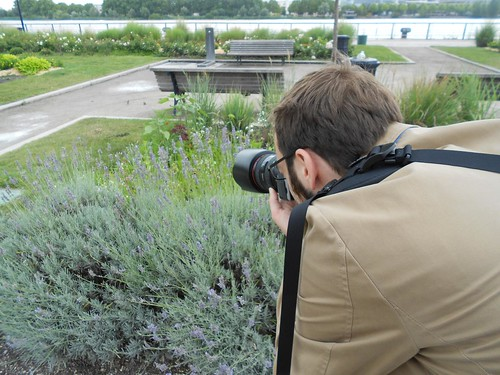 Nate Photographing Some Bees