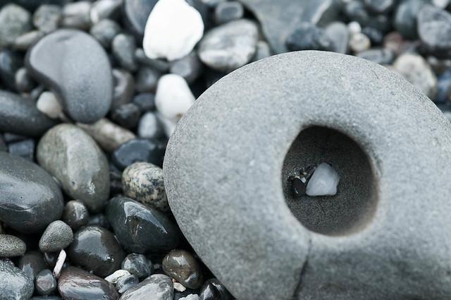 Urchin Rock