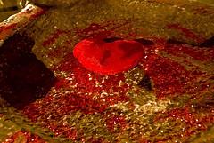 LOS QUE NUNCA MUEREN - FACUNDO CABRAL (ABUELA PINOCHO ) Tags: madrid espaa spain guatemala muerte abstracto corazon asesinato inmemorian museodeamerica facundocabral