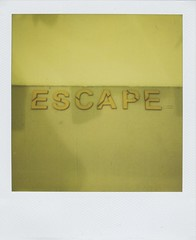 Escape (Lizzie Staley) Tags: summer green film yellow word polaroid sx70 text 600 expired roid 2011 roidweek2011
