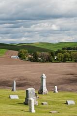 hallowed ground, plowed ground, planted ground (Dean Forbes) Tags: cemetery washington headstones hills wheatfields palouse steptoe hallowedgroundplowedground