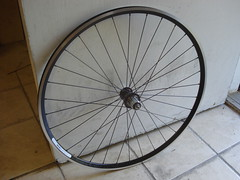 new rear wheel for the madone (Garth L'Esperance) Tags: chris bicycle wheel king swiss velocity dt aerohead