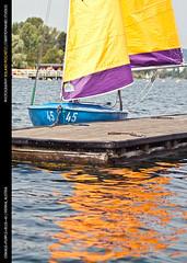 Orange+Purple+Blue=45 (rpeschetz) Tags: vienna wien water sailboat boot wasser sailing segeln segelboot pirat segel altedonau guessedvienna segelschulehofbauer