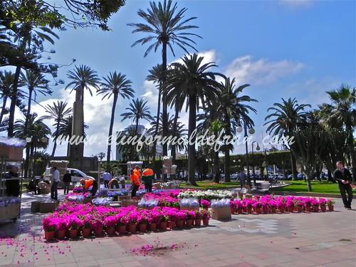 Fotos de Melilla