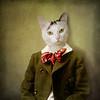 the attentive boy - Le garçon attentif (Martine Roch) Tags: portrait cute cat vintage costume kitten antique surreal surrealist martineroch thecharacters flypapertextures lescaractères