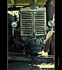 Con quel paraurti un po' storto... (Andrea di Florio (5,000,000 views)) Tags: tractor campagna antiquariato depoca abruzzo semina trattore macchine vigneto forestale frutteto contadino giardinaggio cassone irrigazione forwarder agricolo macchinedepoca rimorchi orticoltura agricoltore coltura antiquefarm stoccaggio mietitrebbie rotopresse arboricoltura falciatrici spandiconcime andreadiflorio antiquariatoagricolo fieniazione aratrici erpici mietitrici stoppiatori vendemmiatrici esboscatori segaacatena