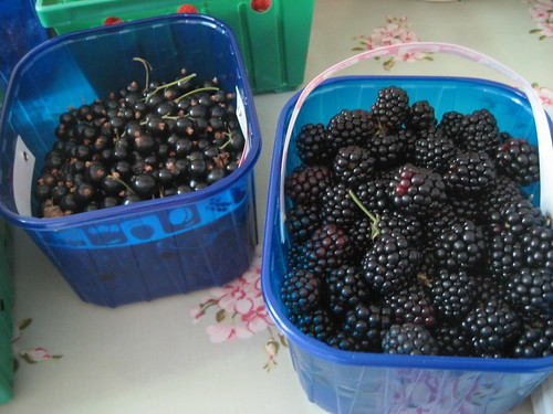Blackcurrants and blackberries