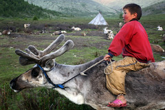 """Reindeer People"" (Wings Of Grey) Tags: travel boy portrait horse reindeer photography riding mongolia siberia cinematic taiga tepee herder tsaatan darhad lpadventure lp2011winners"