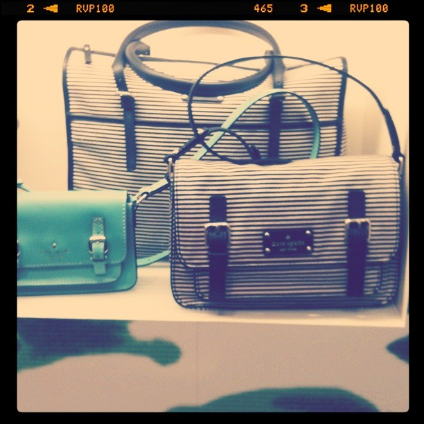 Striped scout at Kate Spade!