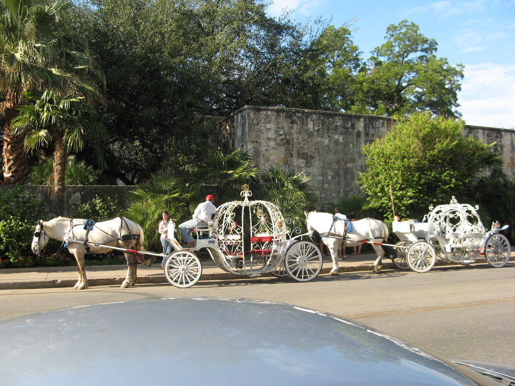 Goofy-as-heck Cinderella carriages with tired, overheated horses and wilted flowers stuck on.