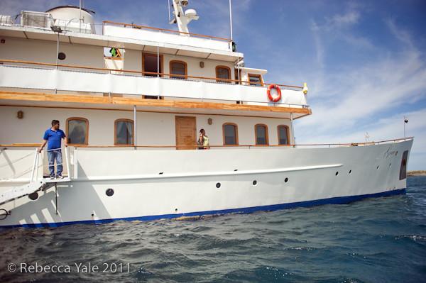 RYALE_Galapagos-296