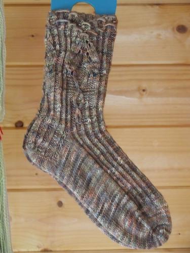 Socks 2011h 0155