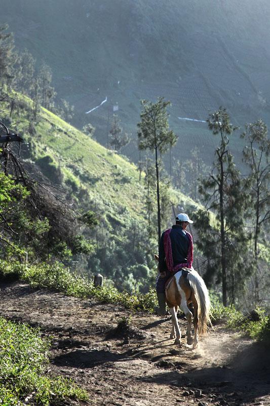 Horseman IMG_0222-w