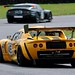 Lotus Elise-Honda - Chris Headlam / Jamie Stanley