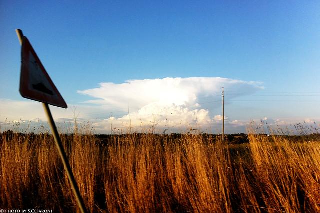 Nube carica