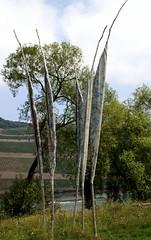 Bingen, Skulpturentriennale 2011, Wasserzeichen von Josef Bcheler (Sculpture Exhibiton 2011, Water Signs) (HEN-Magonza) Tags: sculpture modernart modernekunst bingen wasserzeichen watersigns skulpturentriennale2011 josefbcheler
